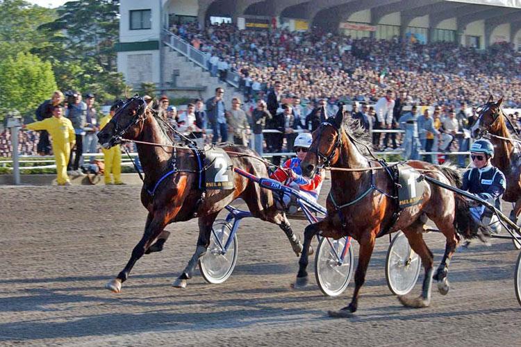 L'arrivo di Varenne (G.P. Minnucci) nel 2002