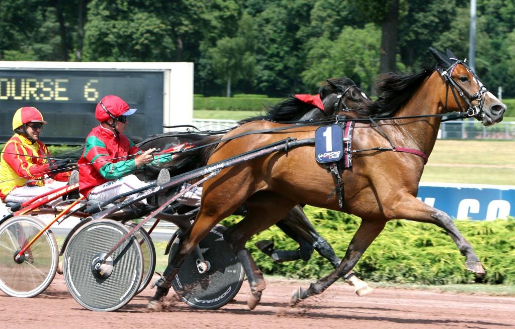 foto: www.equidia.fr
